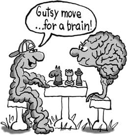 medicina naturale secondo cervello