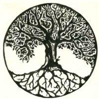 albero della vita Capasso