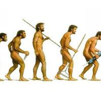 evoluzione posizione verticale gravità