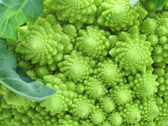_images_Foto_Articoli_alimentazione_cosa_mangiamo_cime-broccoli