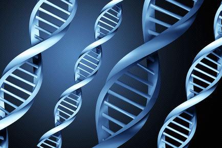 riproduzione DNA acqua
