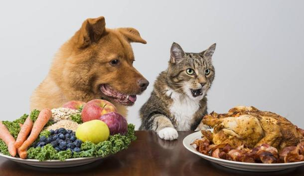 nutrimento stile vita